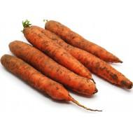 Морковь Эконом